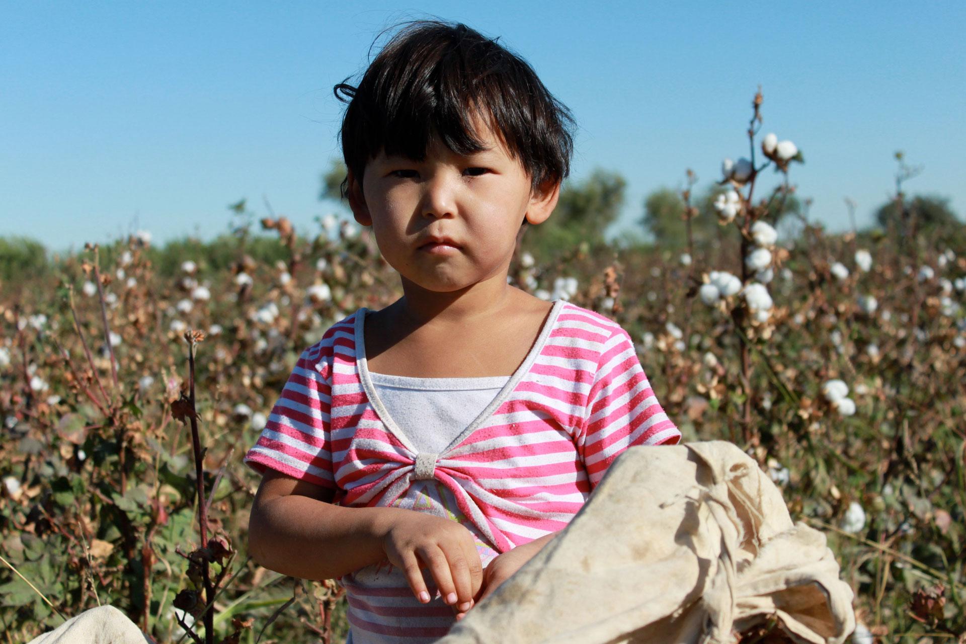 Uzbekistán avanza para eliminar la esclavitud en los campos de algodón