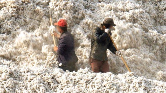 El 20% de las prendas de algodón contienen algodón cultivado con trabajo esclavo